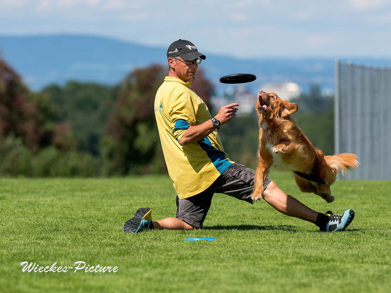 Hundefrisbee Sandro mit Chetana
