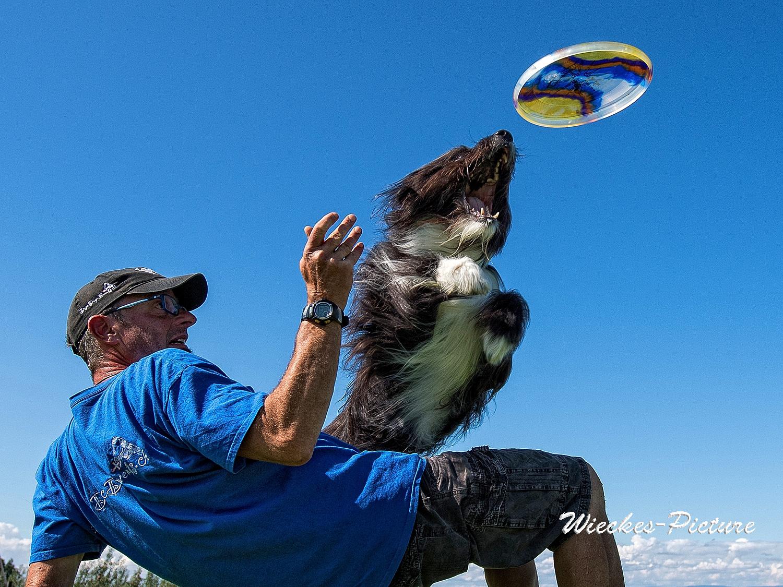 Hundefrisbee Sandro Eigenmann